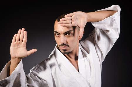 art activity: Karate martial arts fighter