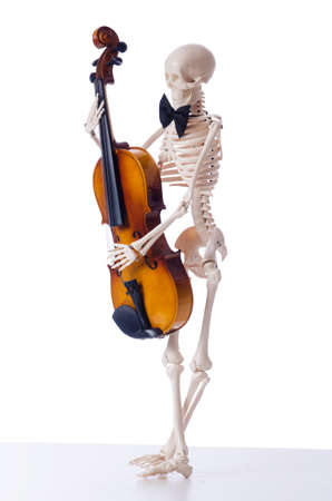 solo violinist: Skeleton playing violin isolated on the white