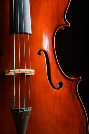 Violin in dark room  - music concept Stock Photo - 18615077