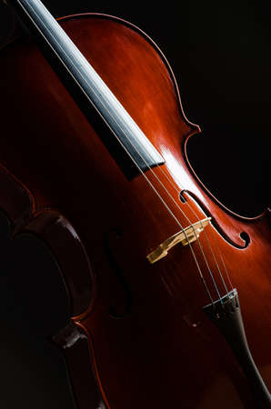 Violin in dark room  - music concept Stock Photo - 18614998