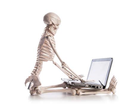 Skeleton working on laptop Stock Photo - 19011367