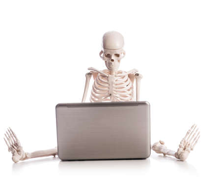 Skeleton working on laptop photo