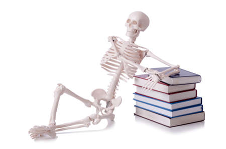 Skeleton reading books on white Stock Photo - 18892389
