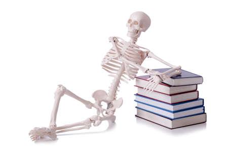 Skeleton reading books on white Stock Photo - 18892389