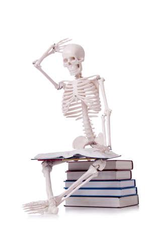 Skeleton reading books on white Stock Photo - 18893582