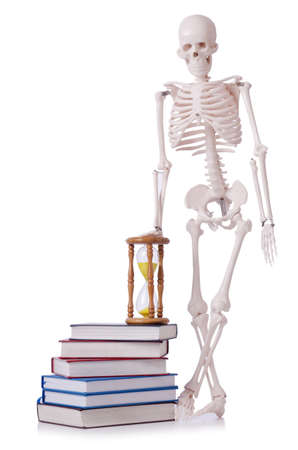 Skeleton reading books on white Stock Photo - 18893583
