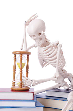 Skeleton reading books on white Stock Photo - 19008792