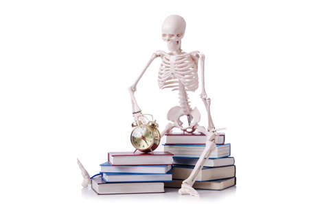 Skeleton reading books on white photo