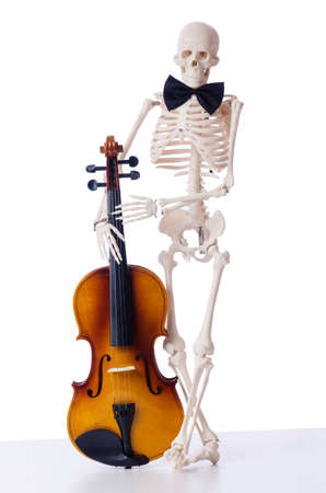 Skeleton playing violin isolated on the white Stock Photo - 19008594