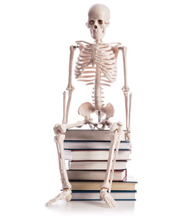 Skeleton with books isolated on white photo