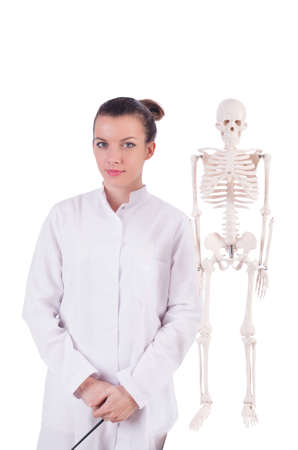 Doctor with skeleton on white photo