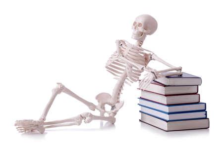 Skeleton reading books on white Stock Photo - 19036939