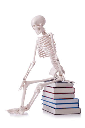 Skeleton reading books on white Stock Photo - 19036913