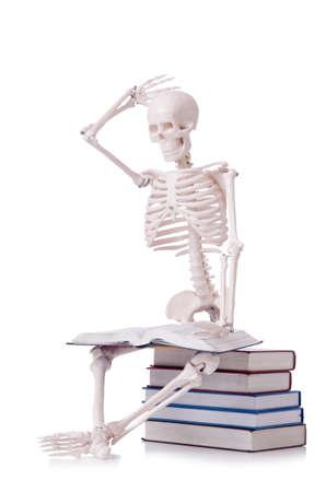 esqueleto humano: Esqueleto de libros de lectura en blanco Foto de archivo
