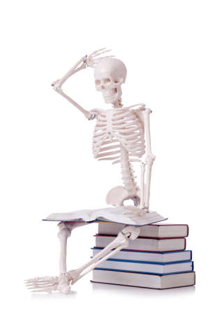 Skeleton reading books on white Stock Photo