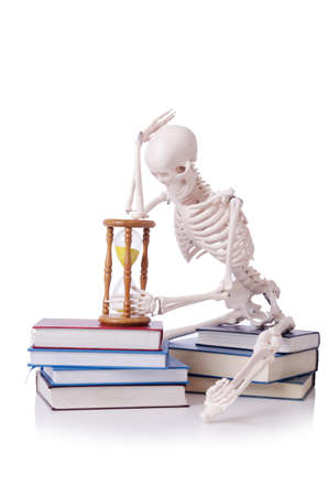 Skeleton reading books on white Stock Photo - 19036871