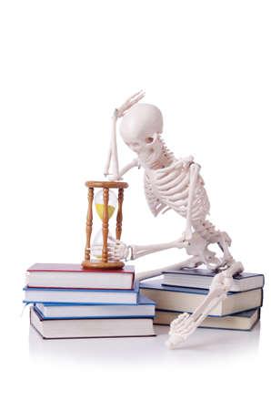 Skeleton reading books on white Stock Photo - 19036871