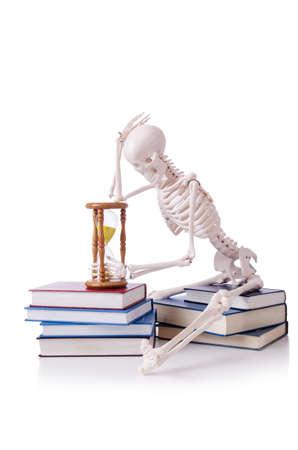 Skeleton reading books on white Stock Photo - 19036979