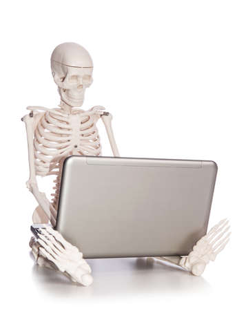 Skeleton working on laptop Stock Photo - 19329031