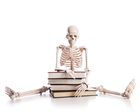 Skeleton with books isolated on white Stock Photo - 19324982