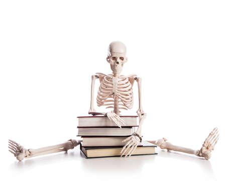 Skeleton with books isolated on white Stock Photo - 19324982