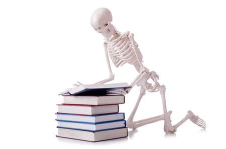 Skeleton reading books on white Stock Photo - 19253192