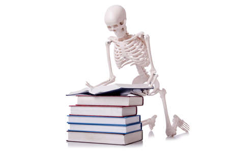 Skeleton reading books on white Stock Photo - 19331654