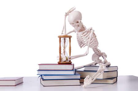 Skeleton reading books on white Stock Photo - 19433781