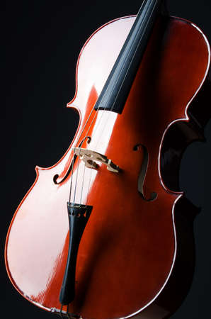 fiddles: Violin on the black background Stock Photo