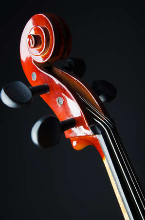 Violin on the black background Stock Photo - 19625085