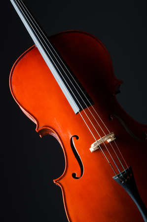 Violin on the black background Stock Photo - 19626123