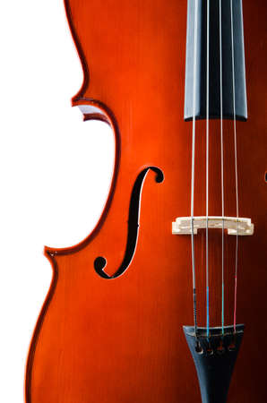 Violin isolated on the white background Stock Photo - 19654205