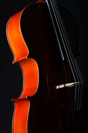 Violin on the black background photo