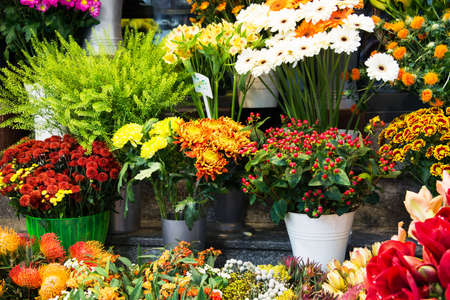 Street flower shop with colourful flowers Standard-Bild