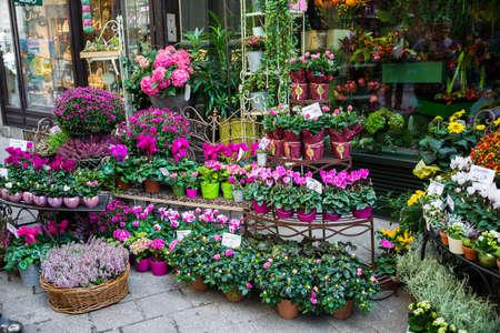 Straat bloemenwinkel met kleurrijke bloemen Stockfoto