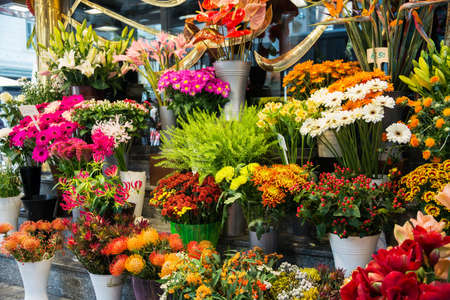 Street flower shop with colourful flowers Stok Fotoğraf