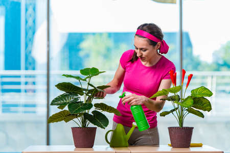 Young woman taking care of home plants Imagens