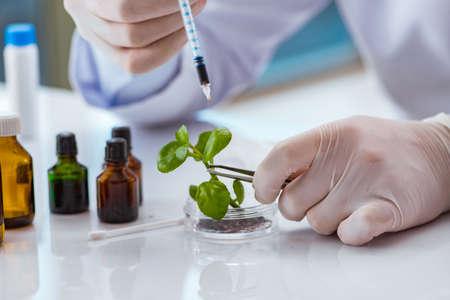Biotechnologie Wissenschaftler arbeiten im Labor