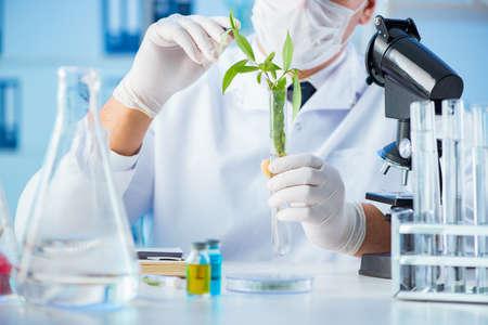 Concetto di biotecnologia con scienziato in laboratorio