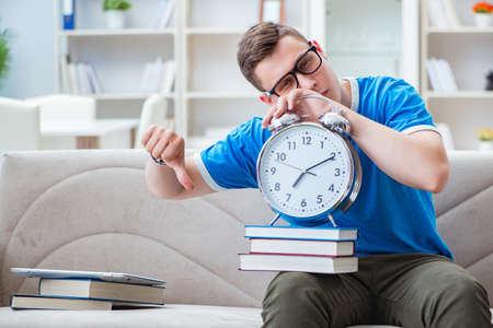 Young student preparing for exams studying at home on a sofa Stock Photo