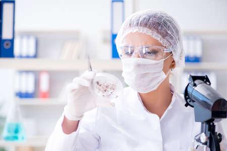 Female scientist researcher conducting an experiment in a labora Archivio Fotografico