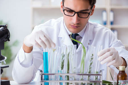 Biotechnology scientist chemist working in lab Foto de archivo