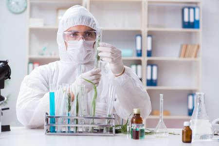 Biotechnologie Wissenschaftler Chemiker arbeiten im Labor Standard-Bild - 94881017