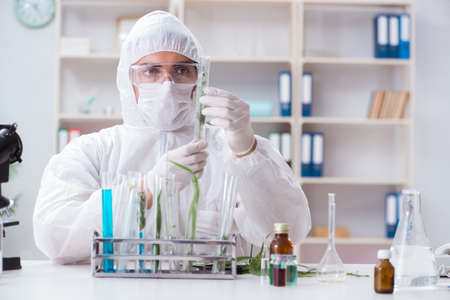 Biotechnology scientist chemist working in lab Imagens