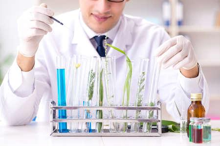 Biotechnology scientist chemist working in lab Imagens
