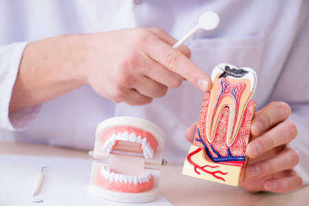 Dentist working teeth implant in medical lab