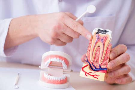 Implante de dientes de trabajo dentista en laboratorio médico
