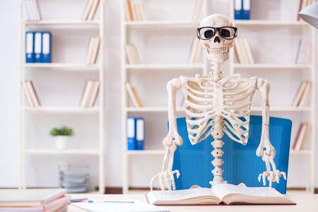 Student skeleton preparing for exams Stock Photo