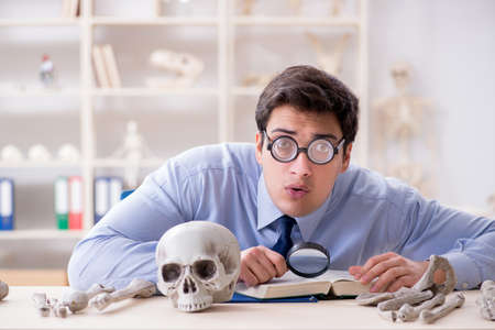 Funny crazy professor studying human skeleton 版權商用圖片
