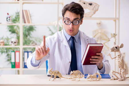 Funny crazy professor studying animal skeletons